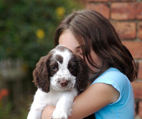 La scienza ha dimostrato che i cani hanno dei sentimenti