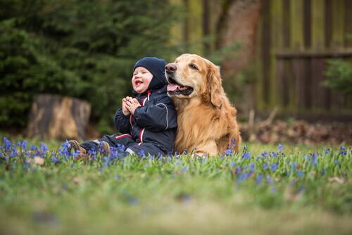 Cani: ecco le razze più adatte ai bambini