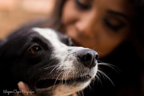 una padrona coccola il suo cucciolo