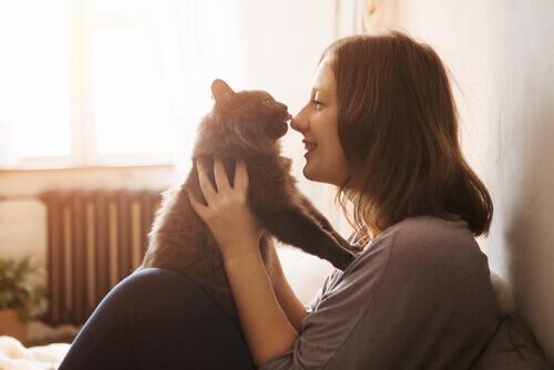 padrona avvicina il gatto al suo viso