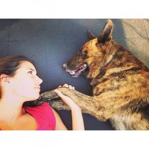 padrona coccola il proprio cane sdraiato