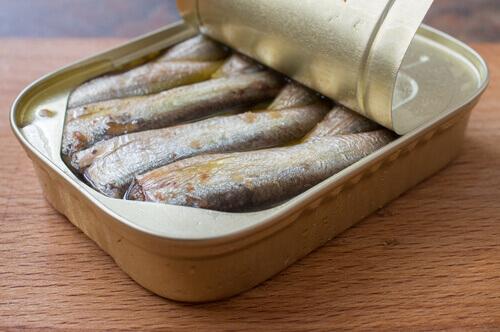 una latta di sardine per la dieta barf
