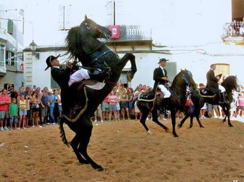 Le migliori razze di cavalli spagnoli