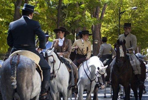 una manifestazione equina di cavalli andalusi
