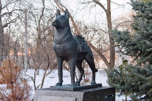 una statua dedicata ai Cani da ricerca e salvataggio