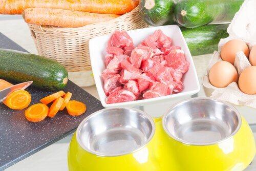 alcuni ingredienti crudi della dieta barf