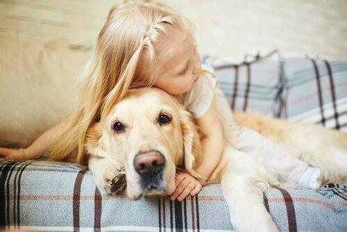 bimba piccola abbraccia cane sulla testa
