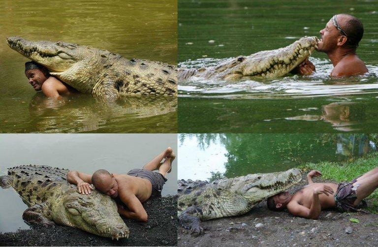 La sorprendente amicizia tra un uomo e un coccodrillo