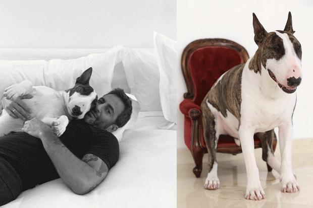 Marc Jacobs con il suo cane Neville