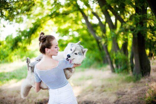 ragazza prende in braccio husky