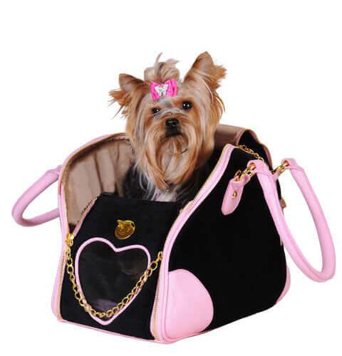 yorkshire con fiocco rosa in una borsa