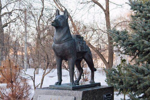 statua di Haciko