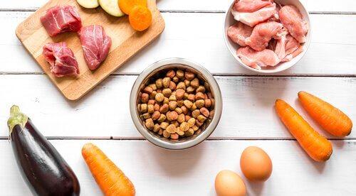 una tavola con ingredienti vari e crocchette per cani