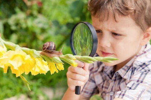 bambino osserva una lumaca con una lente
