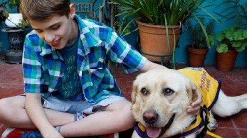 Cane guida bambino cieco