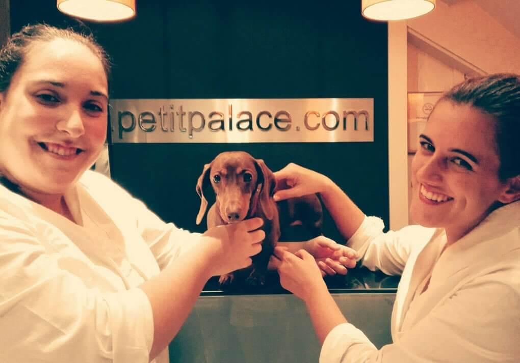Ragazze con un cane in un hotel per animali