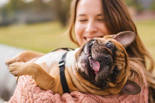 padrona tiene in braccio cane sorridente