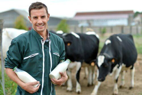 un produttore con due fiaschi di latte davanti ad alcune mucche
