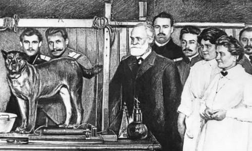 Ivan Pavlov e l'addestramento positivo del cane