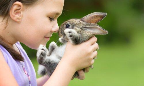 Bimba gioca col suo coniglietto