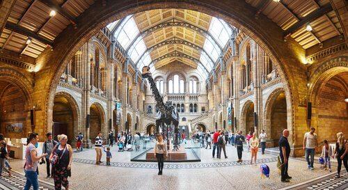 Scopriamo i 5 migliori musei di storia naturale