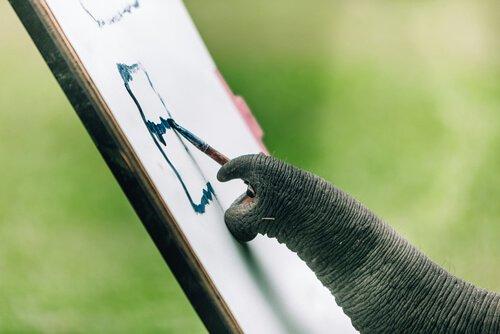 Proboscide di elefante con pennello