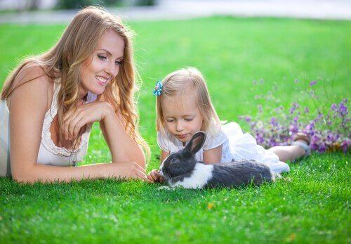 Consigli per giocare con un coniglio