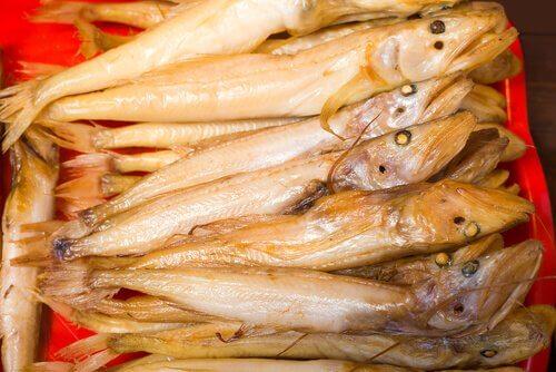 Pesci comephorus