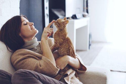 ragazza gioca sul divano con il suo gatto