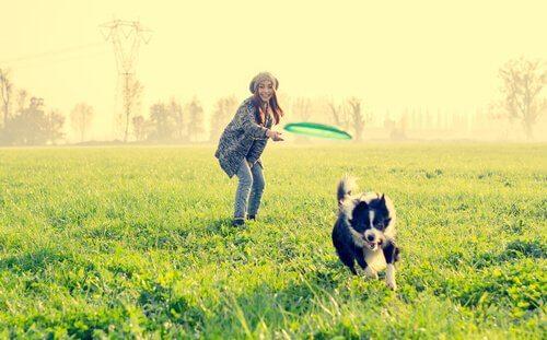 9 attività divertenti per il cane da non perdere