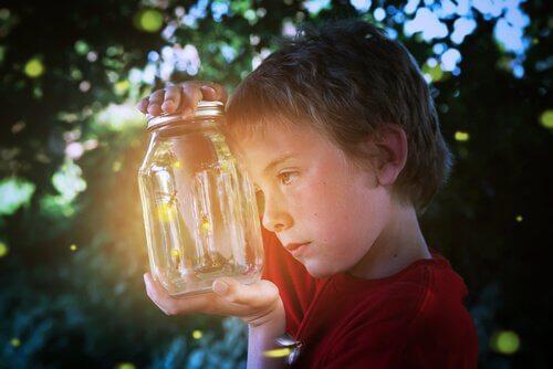 La lucciola, lo straordinario insetto che illumina la notte