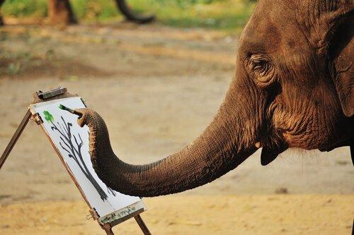 Elefanti che dipingono: è abuso sugli animali?