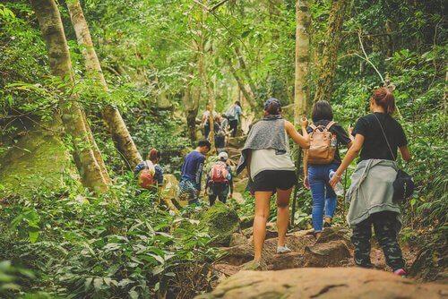 un gruppo di turisti visita un parco nazionale