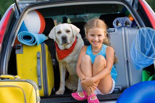 una bambina accanto al suo labrador retriever nel portabagagli