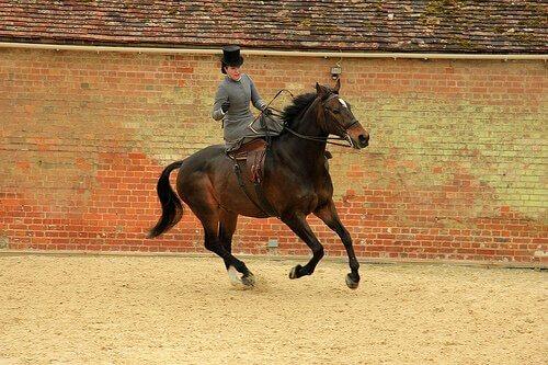 una fantina con cilindro corre a cavallo in un recinto di mattoni