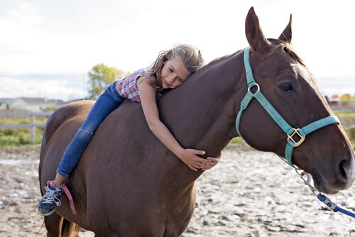 Bambina con cavallo ippoterapia