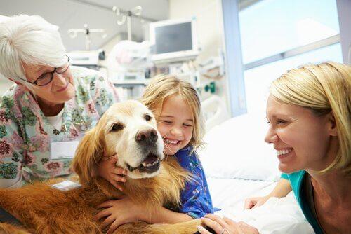 Cane da terapia con bambini