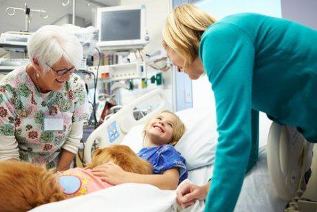 Cane in ospedale con bambina