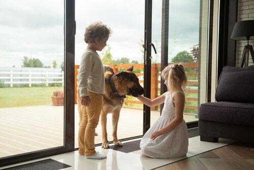 Due bambini con un pastore tedesco
