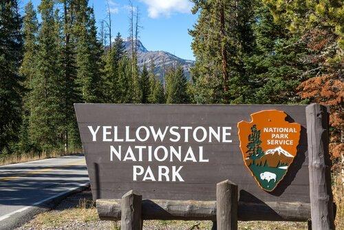 Parco nazionale di Yellowstone: il primo al mondo
