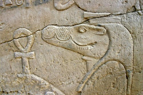 5 animali sacri dell'Antico Egitto