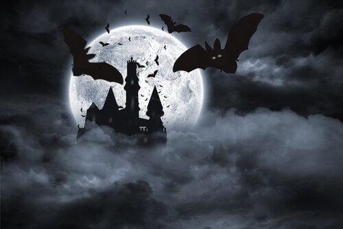 Pipistrelli che volano al chiaro di luna