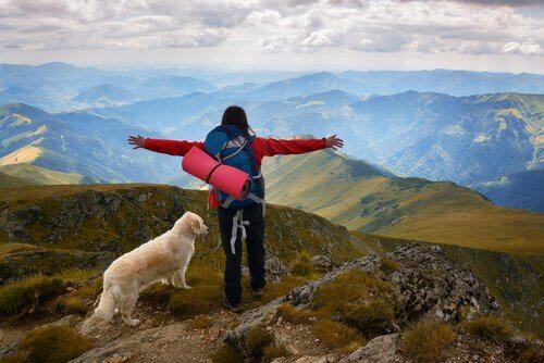 ragazza e cane fanno escursionismo in montagna