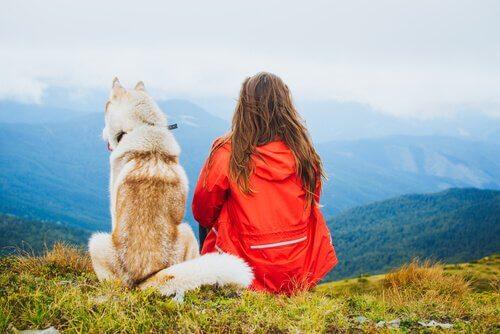 Ragazza e cane su una montagna guardano il panorama