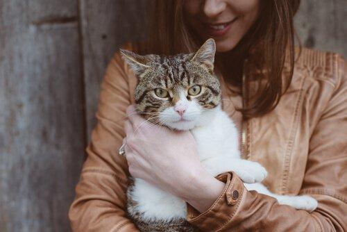 ragazza tiene in braccio un gatto