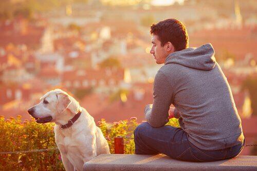 Ragazzo seduto si riposa con il cane accanto