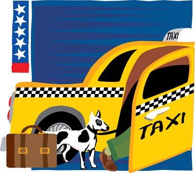 I taxi per animali arrivano anche in italia
