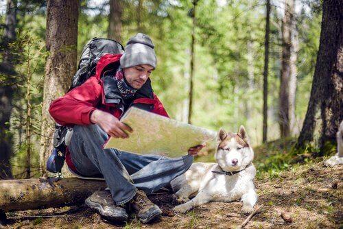 Escursionismo con il cane: consigli e considerazioni