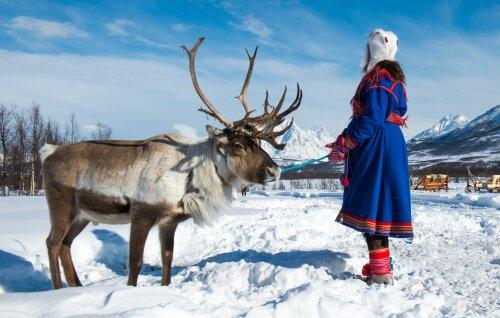 Gli ultimi pastori di renne