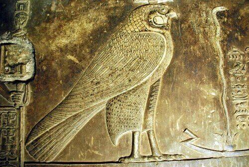 Falco uccello sacro nell'Antico Egitto